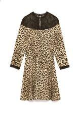 NWT Zara Womens Animal Print Skater Black Gold Lace Collar Dress Sz S 8419/167