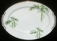"""Noritake Japan 1538G Bamboo Pattern 16 1/8"""" Oval Serving Platter"""