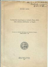 1979 ANTONIO P. ARIANI LA MAURITIA (LEPORICYPRAEA) VALENTIA NATURALISTI NAPOLI