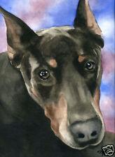 Blue Doberman Pinscher Dog Watercolor 8 x 10 Art Print Signed Djr