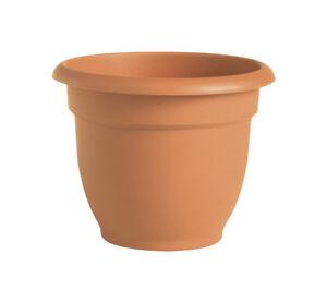 Bloem  8 in. Dia. Terracotta Clay  Resin  Ariana  Planter
