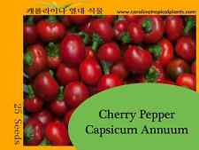 Cherry Pepper Seeds (25 Seeds)