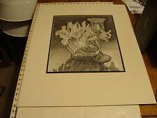 JAN STEELE, drawing: pencil: STILL LIFE: GLASS, FLOWERS, CRYSTAL