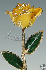 Yellow Rose by Living Gold - Real Rose Dipped in 24k Gold - VALENTINE'S DAY!