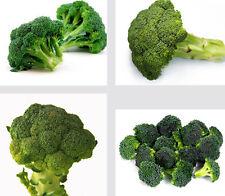 Broccoli Seed Cauliflower Seed Green Vegetable Seeds ~1 Pack 50 Seeds~