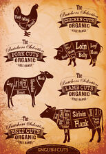 Diagram Of Cut Carcasses Chicken, Pig, Cow, Lamb Poster Print, 13x19