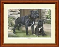 STAFFORDSHIRE BULL TERRIERS ltd edition Giclee print