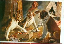 STRANGER IN CAMP-CM COOLIDGE-DOGS-POSTCARD-(MISC2-11*)