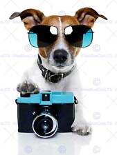 JACK RUSSELL DOG SHADES CAMERA PHOTOGRAPHER ART PRINT POSTER PICTURE BMP2034B