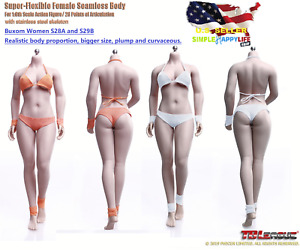 PHICEN TBLeague 1/6 Buxom Women S28A and S29B Seamless female Body❶USA IN STOCK❶