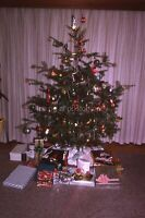 Vintage 35mm FOUND SLIDE Transparency CHRISTMAS TREE Bulbs FREE SHIPPING Photo 2