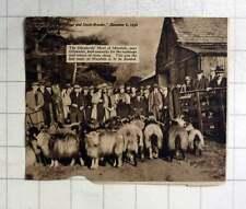 1936 Shepherds Meet At Mardale, Near Ullswater, Exchanging Stray Sheep