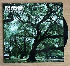 """Noel Gallagher's High Flying Birds 7"""" Black Vinyl The Dying Of The Light"""