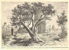 "EGYPTE EGYPT "" ZIFTé TOMBEAU CHEIKH EL TIAIARI ARBRE "" GRAVURE ENGRAVING 1888"
