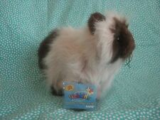 Webkinz Himalayan cat new with tags Hm165 so cute and fluffy!