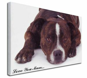 Staffie+Rose /'Love You Mum/' Soft Velvet Feel Cushion Cover With AD-SBT6Rlym-CPW