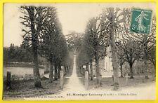 cpa MONTIGNY LENCOUP (Seine et Marne) L'ALLÉE du CÈDRE Cliché SIMONET à BRAY