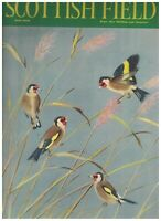 Scottish Field Magazine May 1959 Goldfinches William MacTaggart Rammerscales