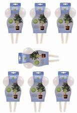 14 x bombillas de Riego de Plantas Sistema de Riego Aqua Globo para las plantas en el Interior/Al Aire Libre
