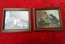 Pair Of Vintage Cat Prints In Glazed Oak Frames