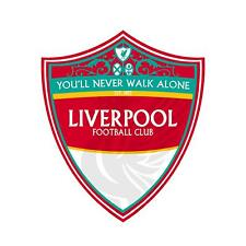 12 STICKERS LIVERPOOL Football Club  Vinyl  Decal Stickers HQ CAR Laptop WALL