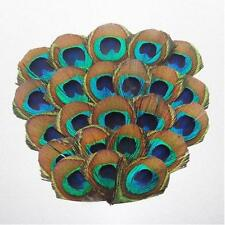 PEACOCK  FEATHER PAD - New Pads; Headband/Hats/Bridal/Craft/Dress