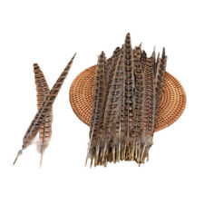 20 Pack Natural 25-30cm Pheasant Tail Feathers 10-12 Inch Long DIY Craft Party