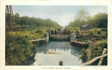 1907 Dismal Swamp Canal Jamestown Exposition Virginia Postcard 20-8054