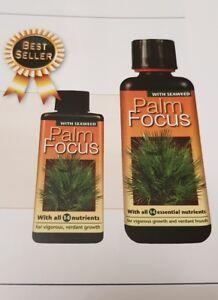 PALM FOCUS - 1 Litre - Nutrients for Palm Trees