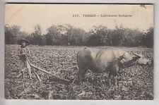 CPA  ASIE VIETNAM -  INDOCHINE TONKIN LABOUREUR INDIGENE VACHE CHARRUE 1910 ~B63