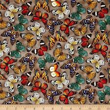 Fat Quarter Butterflies You Bug Me 100% Cotton Quilting Fabric Insects