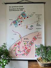 Cool Original Vintage Pull Down School Wall Chart Of The Genetic Code Chart Ii