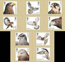 Birds of Prey 2019 10 Postcard Set  Royal Mail
