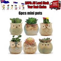 6pcs Mini Owl Plant Pots Flower Succulent Plants Ceramic Flower Pot Decora