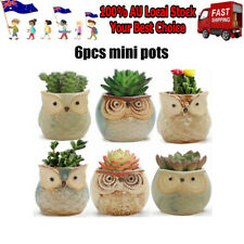 6pcs Mini Owl Plant Pots Flower Succulent Plants Ceramic Flower Pot Decora