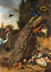 """Melchior de Hondecoeter : """"Peacocks"""" (1683) — Giclee Fine Art Print"""