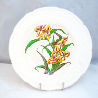 "Royal Cauldon England HAYWOOD FLORAL X2894 ""Yellow Flowers"" Dinner Plate READ"