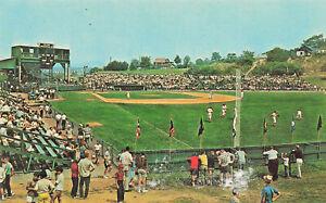 Williamsport PA Little League Baseball World Series Close-up Postcard