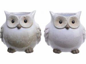 Terracotta Owl Shaped Planter Plant Pot Holder Animal Bird Small Rustic Indoor