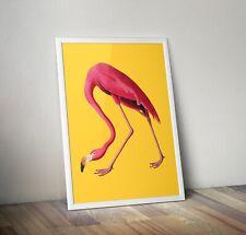 Vintage Flamingo Print, Flamingo Art, Flamingo Art, Flamingo Poster