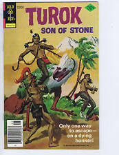 Turok Son of Stone #110 Gold Key Pub 1977