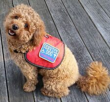 REFLECTIVE Authentic Service Dog Vest with 2 patches Extra Large !