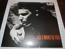 U2 WHITE LABEL PROMO USA 45 ALL I WANT IS YOU CLEAN AND RARE