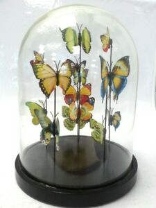 """Laura Ashley Victorian Cottage Butterfly Cloche Dome Table Decoration 11"""" #675"""