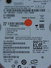 80 GB Seagate ST980813AS / 9S5132-031 / 3.ADC / WU/ 100430580 REV C disco rigido