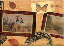 SCRAPBOOK COLLAGE OF NATURE SCENES WALLPAPER BORDER