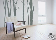 Birch Trees in Winter - Vinyl Wall Decal Sticker Art