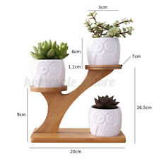 3 Tier Owl Succulent Pots Ceramic Garden Flower Planter Holder Bamboo Stand Set
