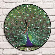 Peacock Color design vinyl record wall clock home shop fish tank collector 2