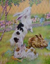 Vintage Rabbits Bunnies Print Rex 1939 Children Book Illustration Victor Becker
